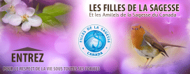 Website, Daughters of Wisdom, Canada