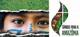 Synode pour l'Amazonie