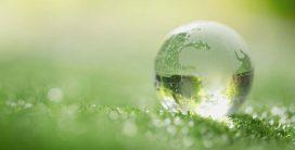 Journée mondiale de l'Environnement, le 5 juin, 2021